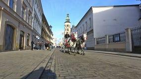 Pferdemannschaft rollt Touristen auf Stadtstraßen stock video footage