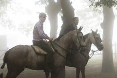 Pferdemesse Lizenzfreie Stockfotografie