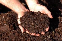 Pferdemist-Kompost stockbilder