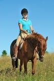 Pferden-Fahrt Stockbild