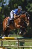 Pferden-Frauen-Reitersprung Lizenzfreies Stockbild