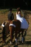Pferden-Hochzeit Lizenzfreie Stockfotos