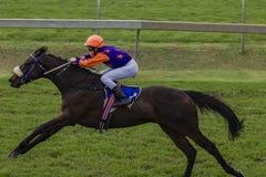 Pferden-Jockey-Drehzahl-Laufen Stockfotografie