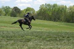 Pferden-Konkurrenz Lizenzfreie Stockfotos