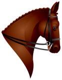 Pferden-Kopf Stock Abbildung