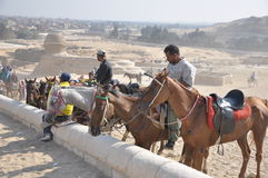Pferden-Mitfahrer um die Pyramiden Stockfotos
