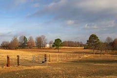 Pferden-Ranch Stockbilder