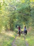 Pferden-Reiten im Herbst lizenzfreies stockfoto
