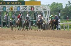 Pferden-Rennen stockfotografie