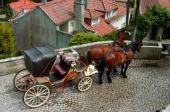 Pferden-Wagen Lizenzfreie Stockfotos