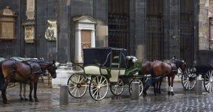 Pferden-Wagen Wien Lizenzfreies Stockbild