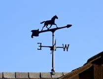 Pferden-Wetter-Vorflügel auf Dach Lizenzfreies Stockbild