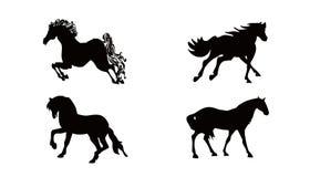 Pferdenansammlungen Stockfotos