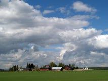 Pferdenbauernhof nahe Helsinki Lizenzfreies Stockbild