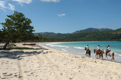 Pferdenfahrt bei Playa Rincon Peninsula de Samana lizenzfreie stockfotos