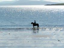 Pferdenmitfahrer auf dem Strand Lizenzfreies Stockfoto