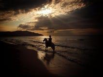 Pferdenmitfahrer auf Strand am Sonnenuntergang Stockfotografie