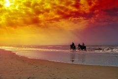 Pferdenreiten Lizenzfreies Stockfoto