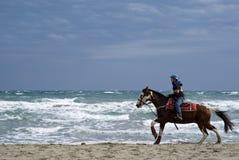 Pferdenreiten auf dem Strand Stockfoto