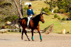 Pferdenreitmädchen Stockfotos