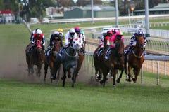 Pferdenrennen Lizenzfreie Stockfotografie