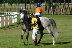 Pferdenrennen Stockbild