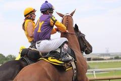 Pferdenrennen. Lizenzfreies Stockbild