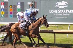 Pferdenrennen. Stockbilder