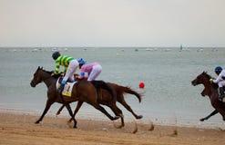 Pferdenrennen auf Sanlucar von Barrameda, Spanien, 2010 Stockbilder