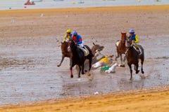 Pferdenrennen auf Sanlucar von Barrameda, Spanien Lizenzfreie Stockfotos