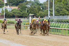 Pferdenrennen bei Churchill Downs Stockfoto