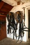 Pferdenverdrahtung Lizenzfreies Stockfoto
