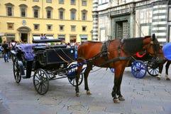 Pferdenwagen Stockfotos