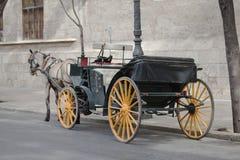 Pferdenwagen Lizenzfreies Stockfoto
