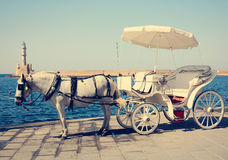 Pferdenwagen in Chania stockfoto