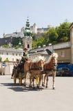 Pferdenwagen in Salzburg lizenzfreies stockbild