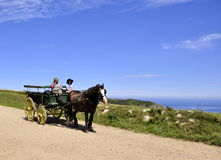 Pferdenwagen in Sark Stockbilder