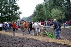 Pferdepflügen Stockfotografie