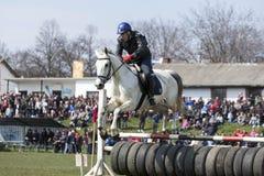 Pferdepolizei-Sperrenspringen Stockfoto