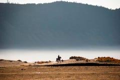 Pferdereiter an der vulkanischen Hochebene von miunt Bromo, Indonesien Lizenzfreie Stockbilder