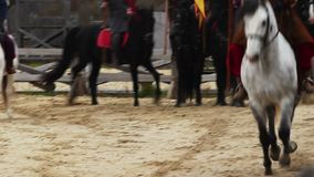 Pferdereiter mit Flaggen Pferde, die am Galopp laufen Mittelalterliche Aktion mit Rittern stock video