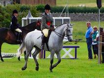 Pferdereiter mit gewinnendem rossette Lizenzfreie Stockbilder