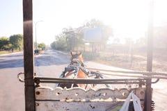 Pferdereiter ` s Augenansicht über die Straße mit dem Sonnenlicht, das morgens glänzt Stockbilder