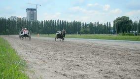 Pferderennbahn während der Kyiv-Stadt Tagesfeier in Kiew, Ukraine, stock video