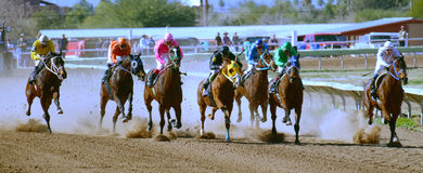 Pferderennen lizenzfreie stockbilder