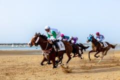 Pferderennen auf Sanlucar von Barrameda, Spanien, 2016 lizenzfreie stockfotografie