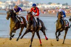 Pferderennen auf Sanlucar von Barrameda, Spanien, 2016 stockfotos