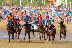 Pferderennen auf Sanlucar von Barrameda, Spanien, 2016 stockbilder