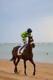 Pferderennen auf Sanlucar von Barrameda, Spanien, im August 2010 Lizenzfreie Stockfotografie