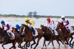 Pferderennen Des Caballos Sanlucar de Barrameda Carrera Stockbilder